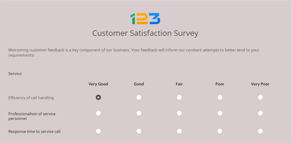 customer satisfaction survey questionnaire